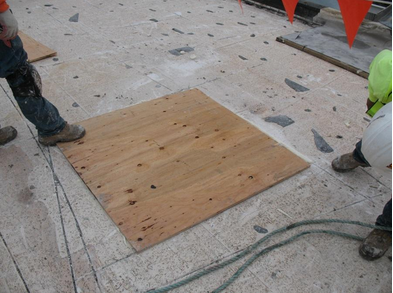 Plywood cover board